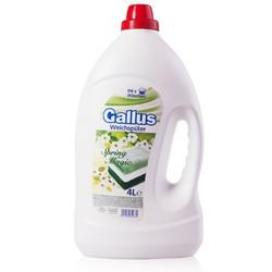 Gallus Spring Magic